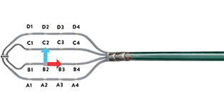 Electrode configuration on Advisor HD Grid Mapping Catheter