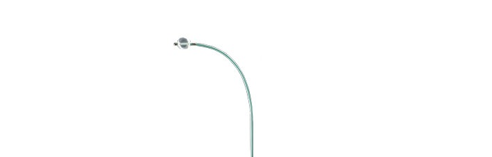 Pacel™ Bipolar Pacing Catheter, Right Heart Curve